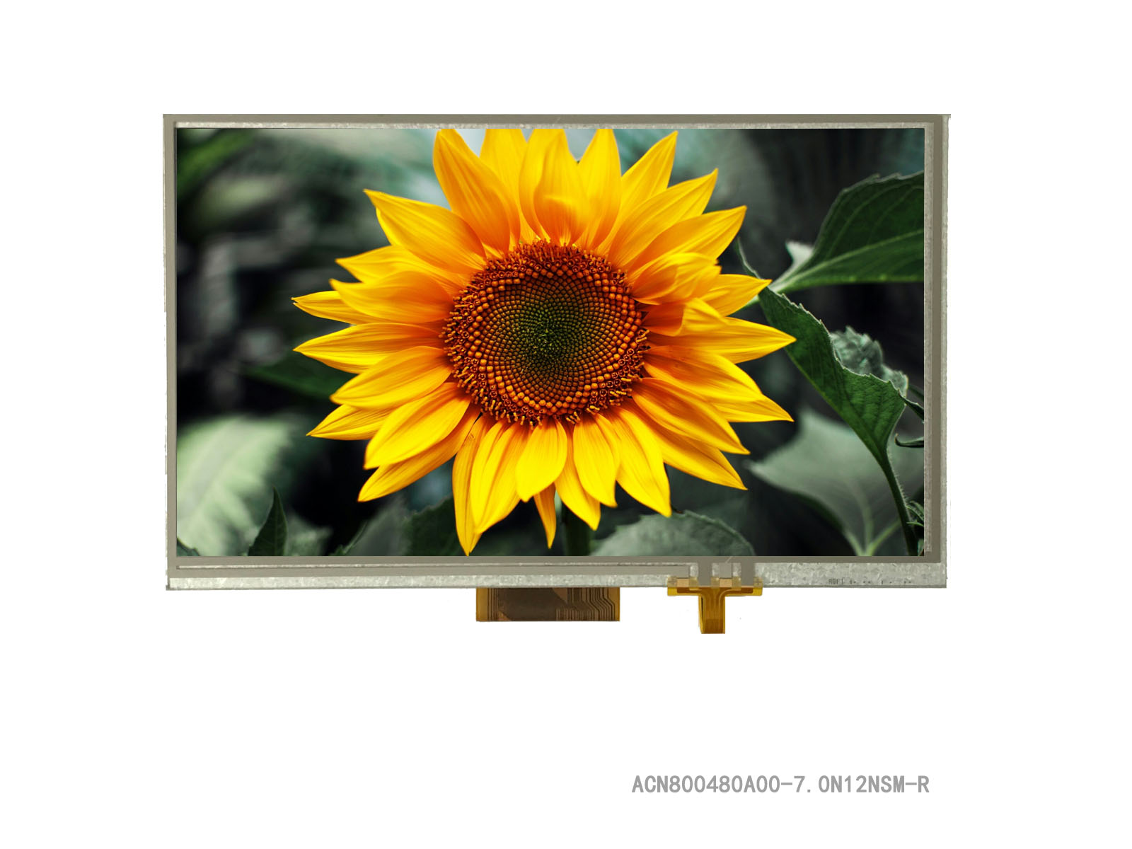 """7"""" TFT Full Control Platform, 800x480, with Resistive Touch Panel"""