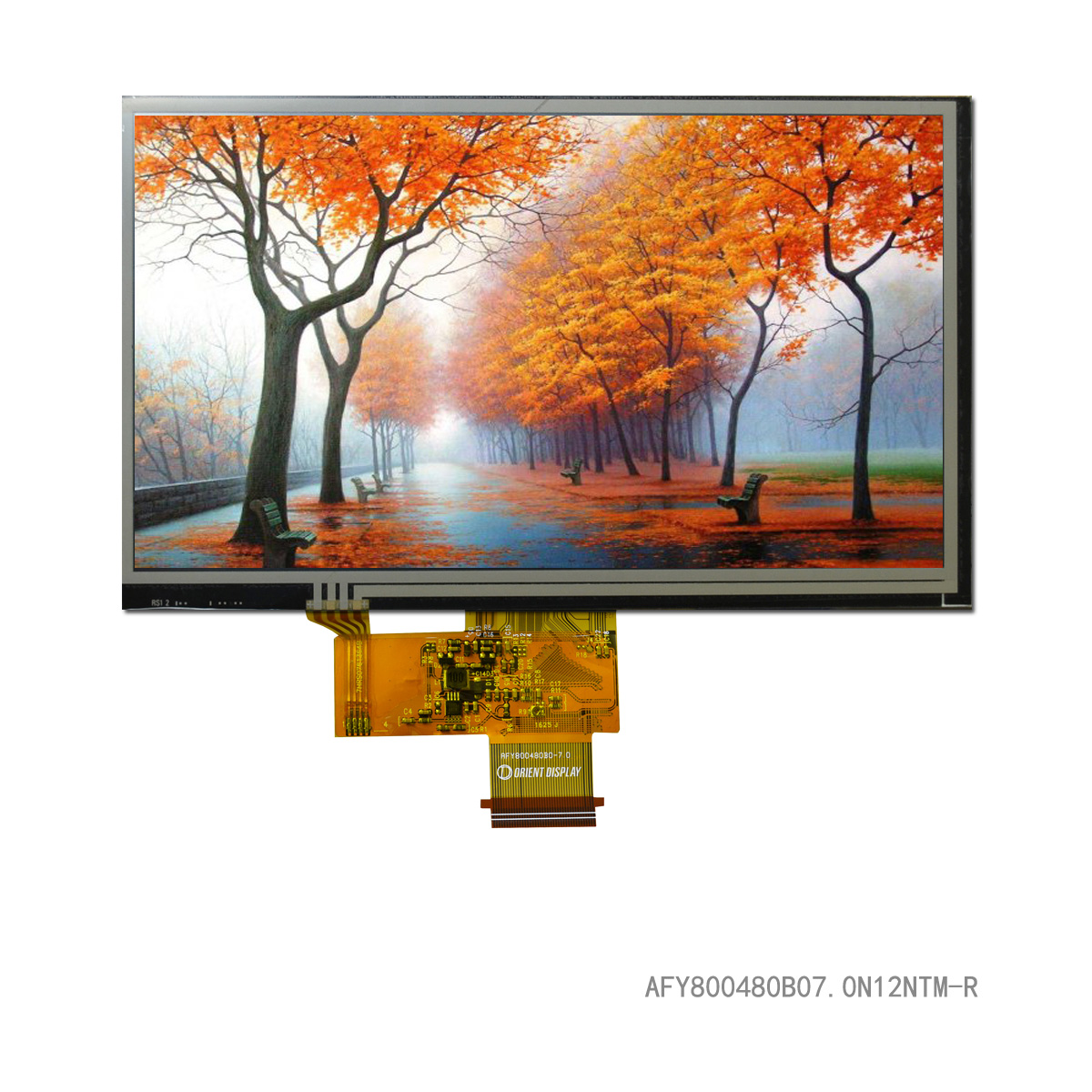 "7.0"" TFT, 800x480, 420 Nits with Resistive Touch Panel"