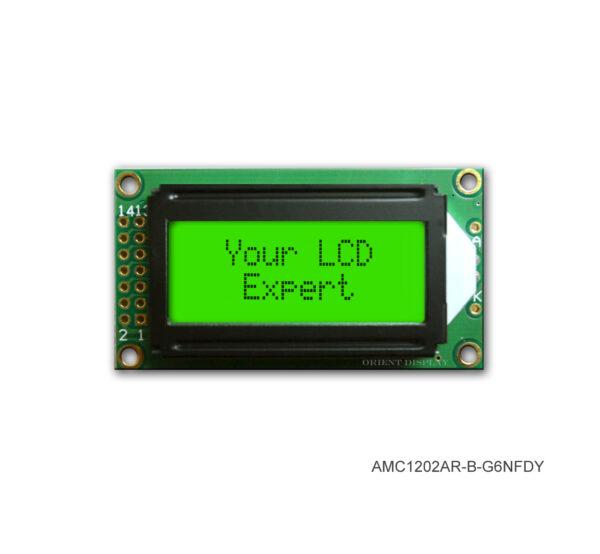 AMC1202AR-B-G6NFDY (12x2 Character LCD Module)