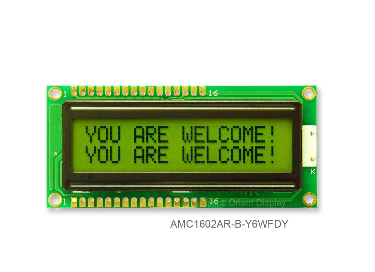 AMC1602AR-B-Y6WFDY (16x2 Character LCD Module)