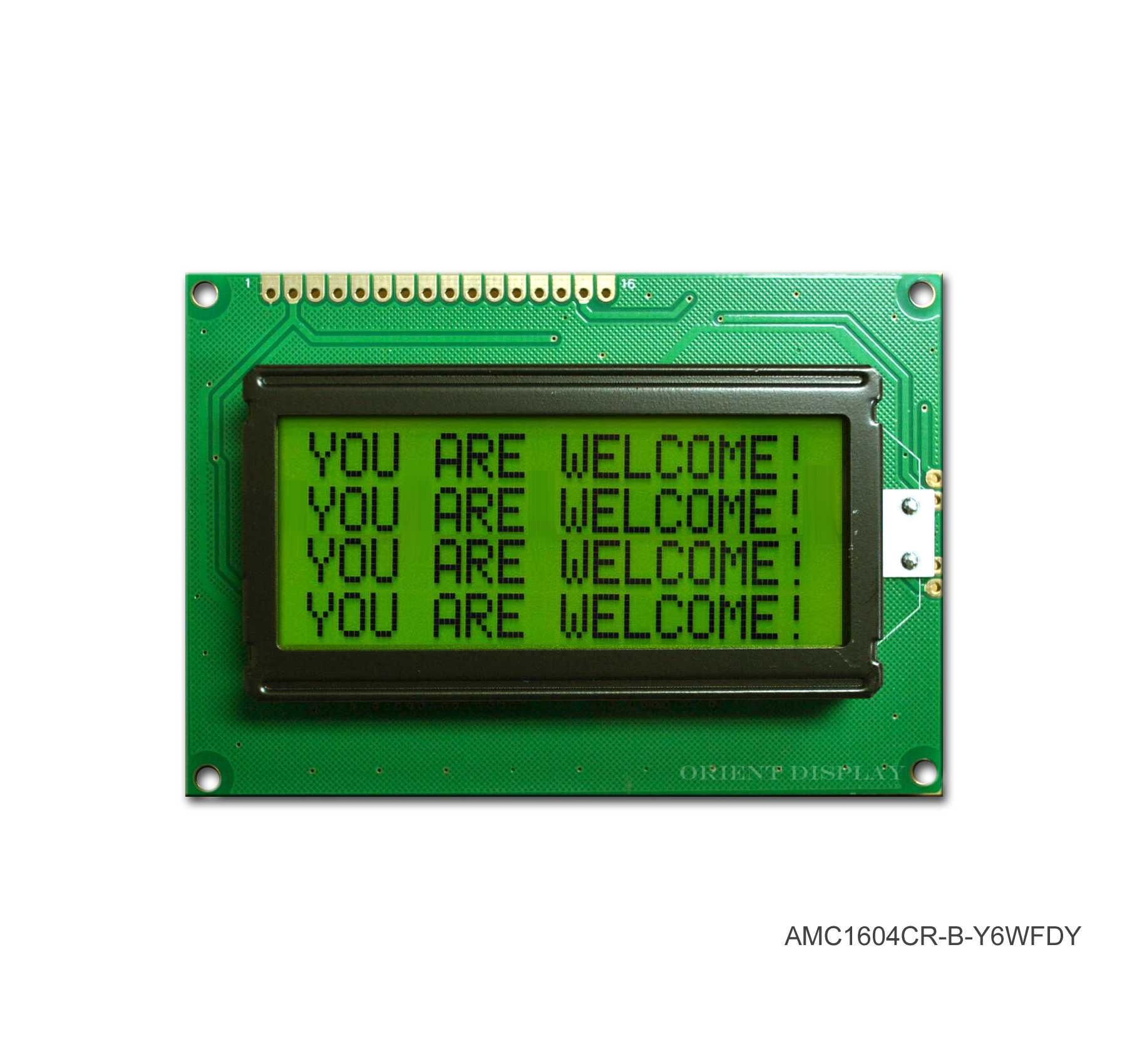 AMC1604CR-B-Y6WFDY (16x4 Character LCD Module)