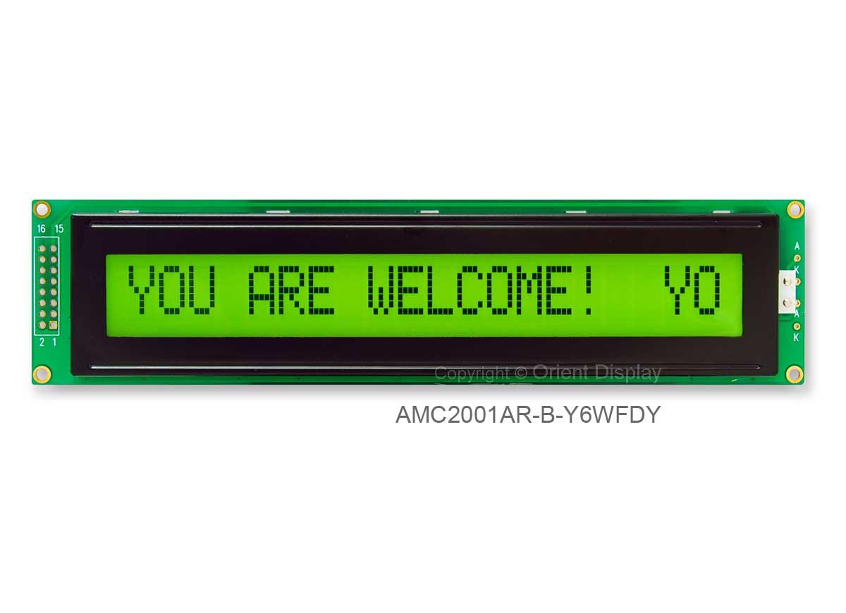 AMC2001AR-B-Y6WFDY (20x1 Character LCD Module)