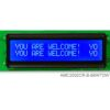 AMC2002CR-B-B6WTDW (20x2 Character LCD Module)