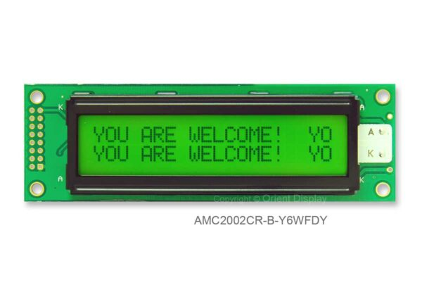 AMC2002CR-B-Y6WFDY (20x2 Character LCD Module)