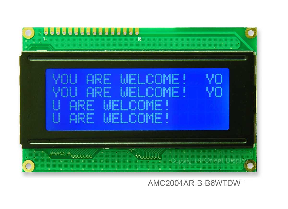 AMC2004AR-B-B6WTDW (20x4 Character LCD Module)