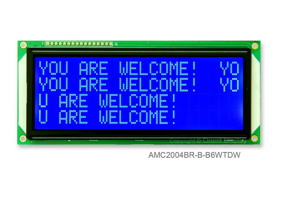 AMC2004BR-B-B6WTDW (20x4 Character LCD Module)