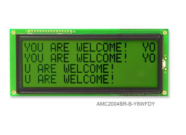 AMC2004BR-B-Y6WFDY (20x4 Character LCD Module)