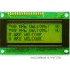 AMC2004CR-B-Y6NFDY (20x4 Character LCD Module)