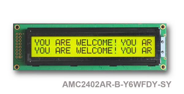 AMC2402AR-B-Y6WFDY (24x2 Character LCD Module)